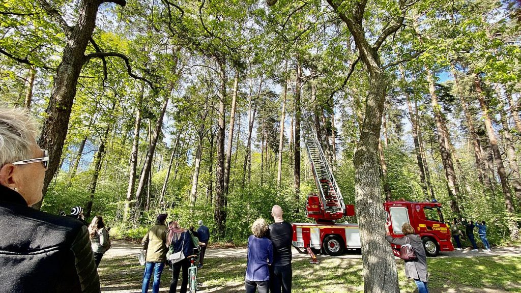Häger räddas av brandkåren