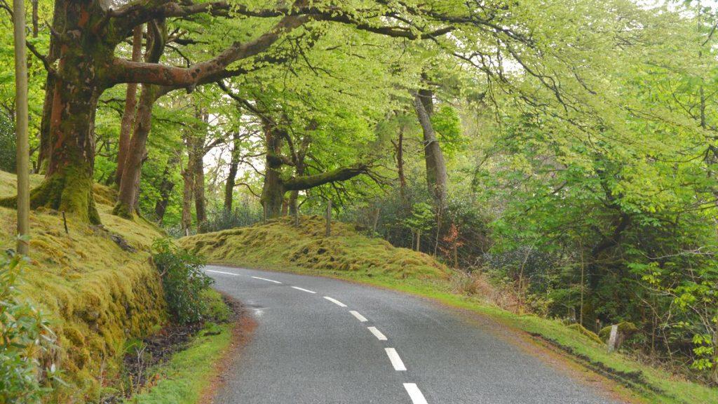 Irland vägar