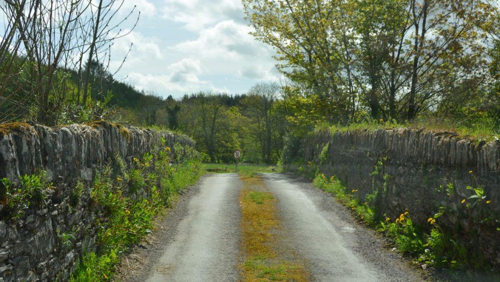 Irländsk väg