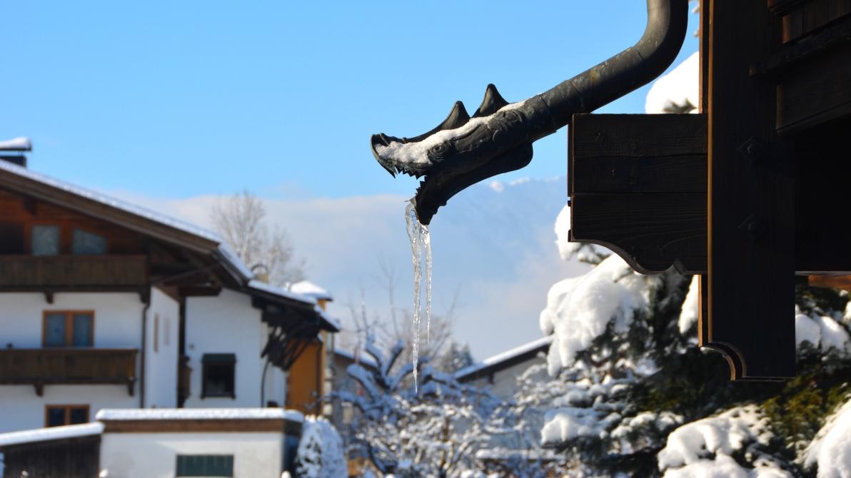 Reith im Alpbachtal - mysig alpby i Österrike