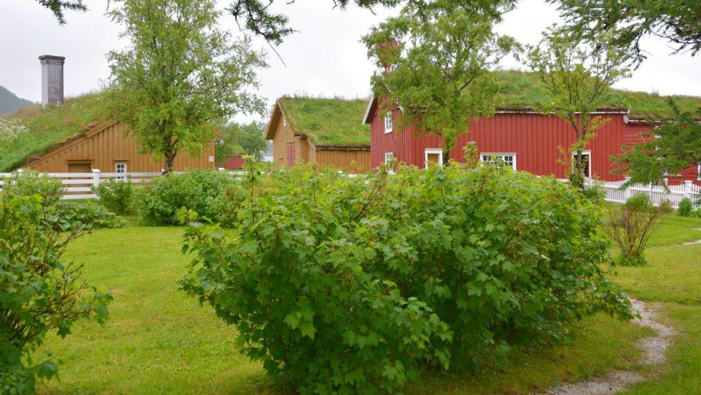 Kjerringoy i Nordndnorge