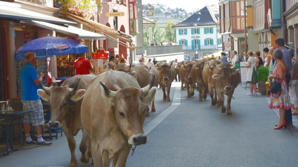 Kor Schweiz