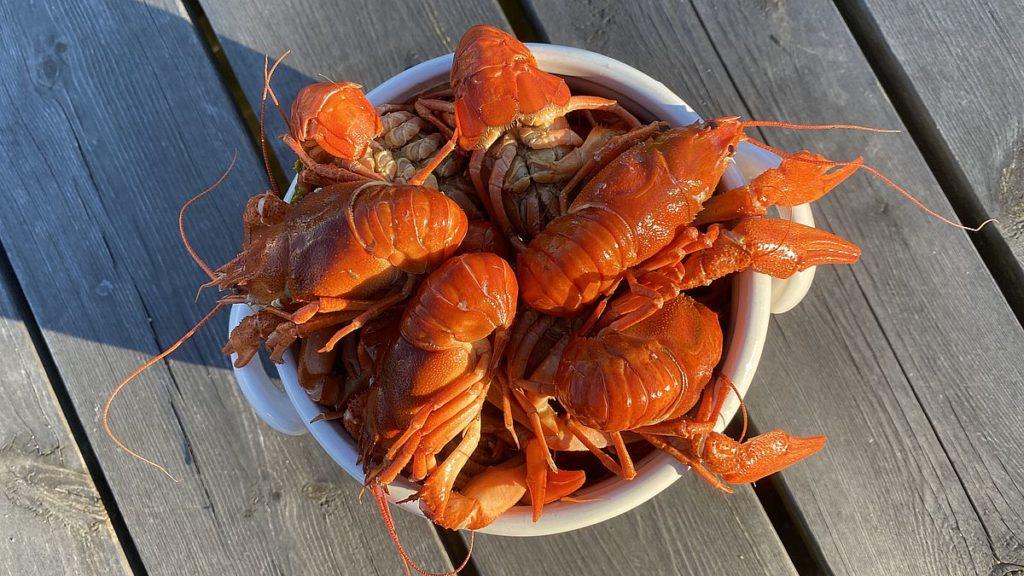 Recept på skaldjur