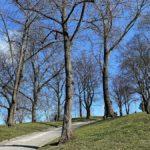 7 parker på Kungsholmen i Stockholm – och en badplats