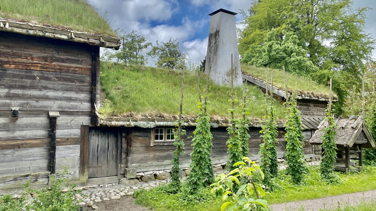 Kulturen i Lund