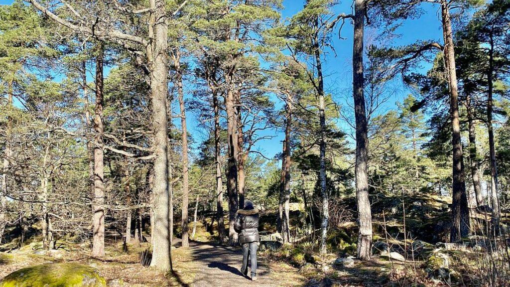 Göra i Strängnäs - natur