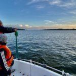Fiska med nät i Mälaren – ett fiskeäventyr