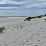 Sandhammaren på Österlen – en vacker sandstrand