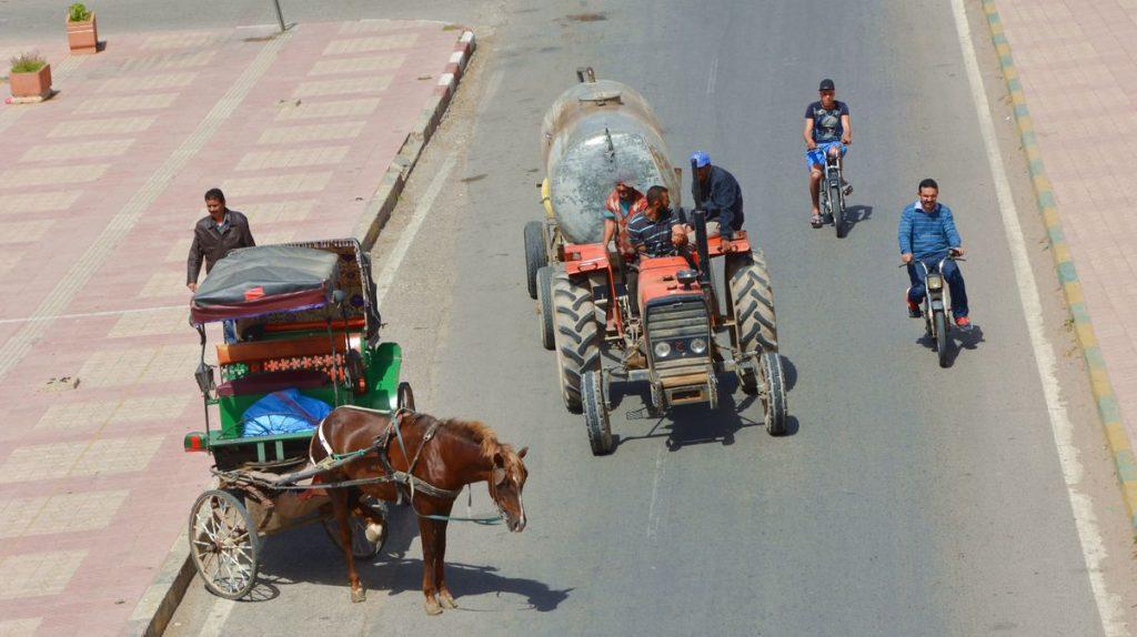 Skilda trafikslag på Taroudants gator