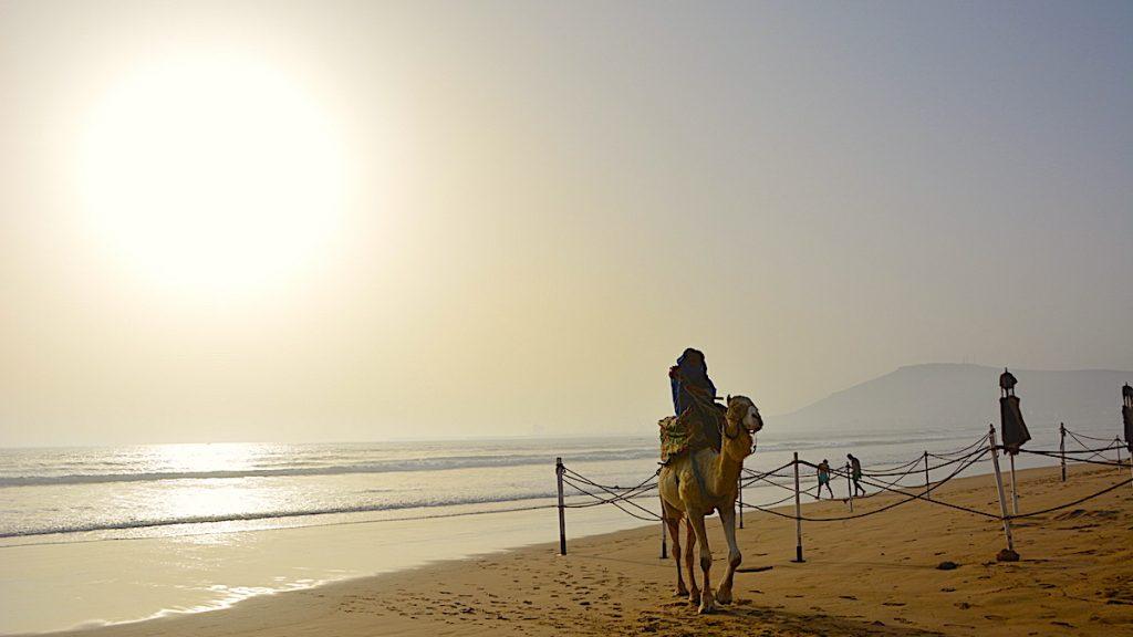 Kamel Agadir på Plage d'Agadir