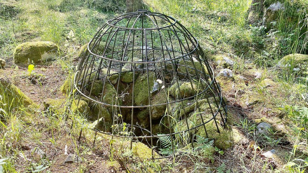 Brunn i Kulturreservatet Lingnåre