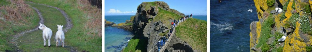 Carrick a rede Nordirland