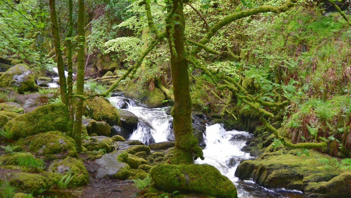 Nationalpark Irland