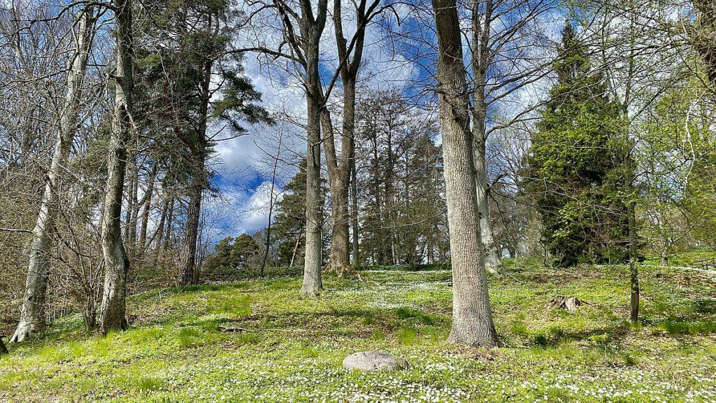 Göra i Jönköping - natur