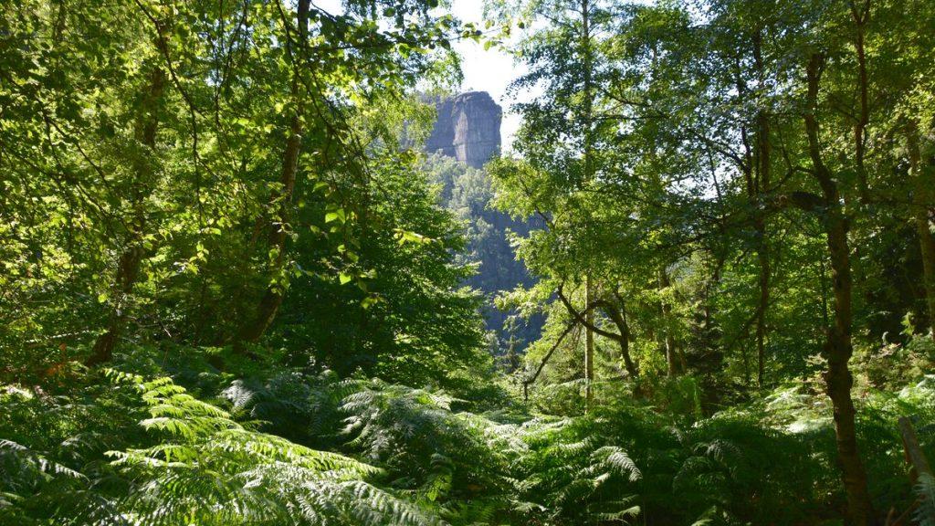 Natur Bohemian Switzerland