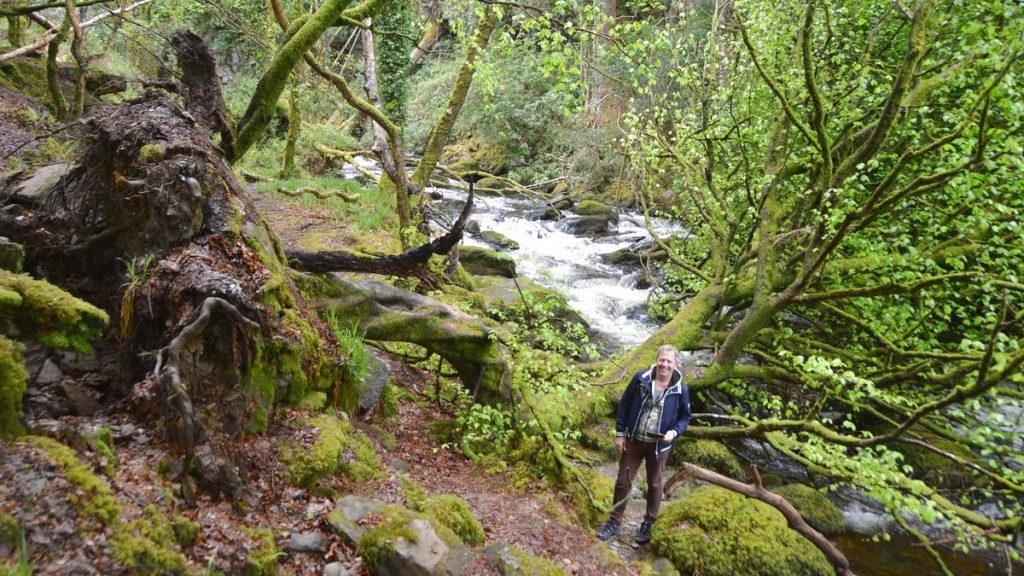 Natur Killarney på Irland