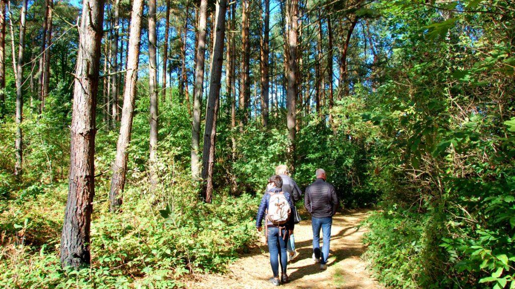 Natur Polen