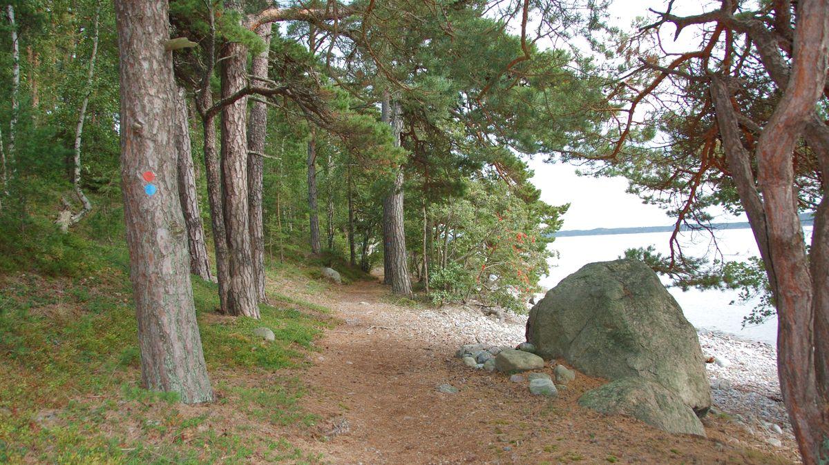 Natur i Gålö