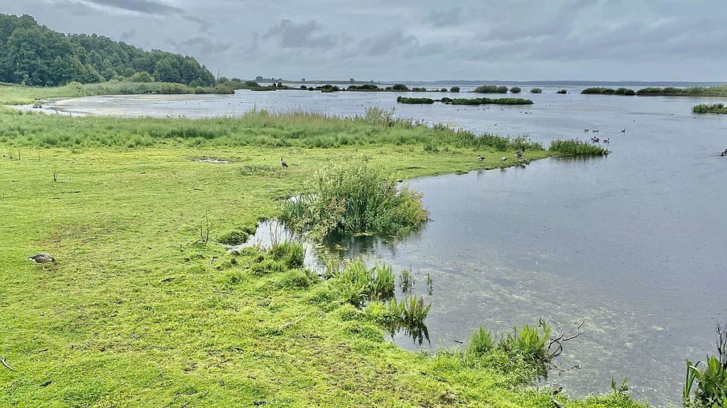 Naturum Hornborgarsjön