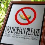 Durian – Kungen av frukter