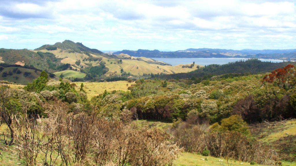 Nya Zeeland runt med husbil