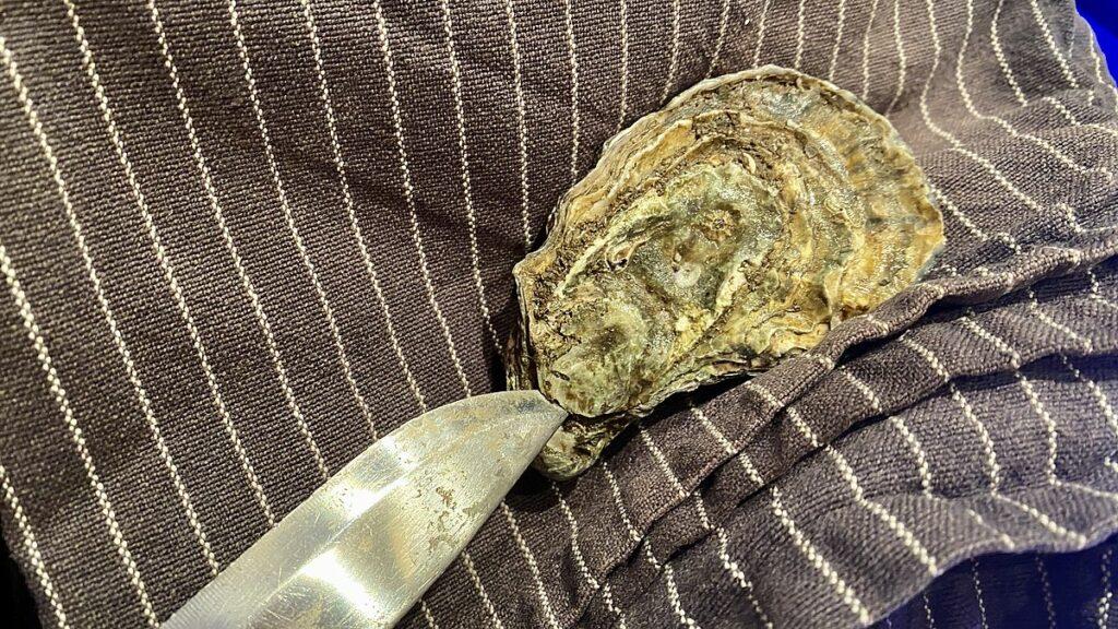 Öppna ostron - kniv