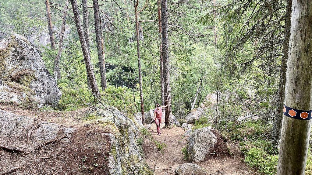 Helena i Tivedens nationalpark