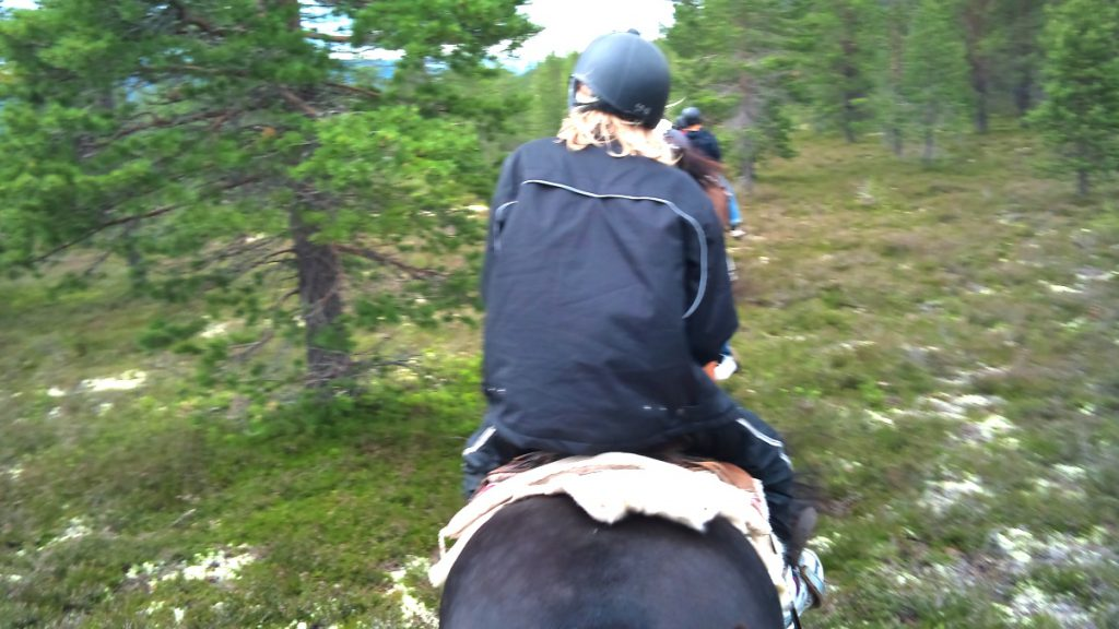 Hästridning i Idre