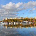 Pampas marina i Solna – allt du vill veta