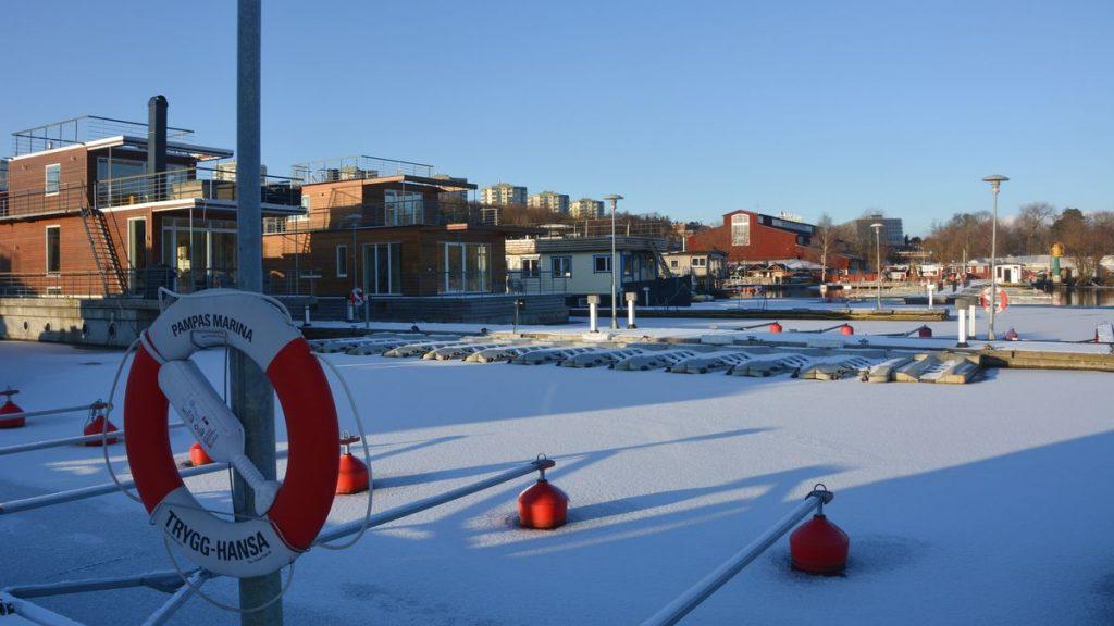 Snö i Stockholm - Pampas marina vinter
