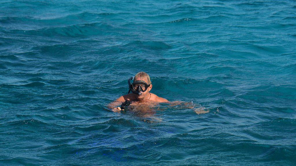 Snorkla i Röda havet