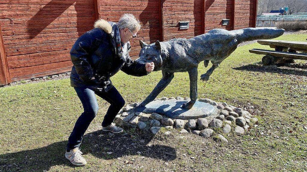 Wildlife park på Öster Malma slott
