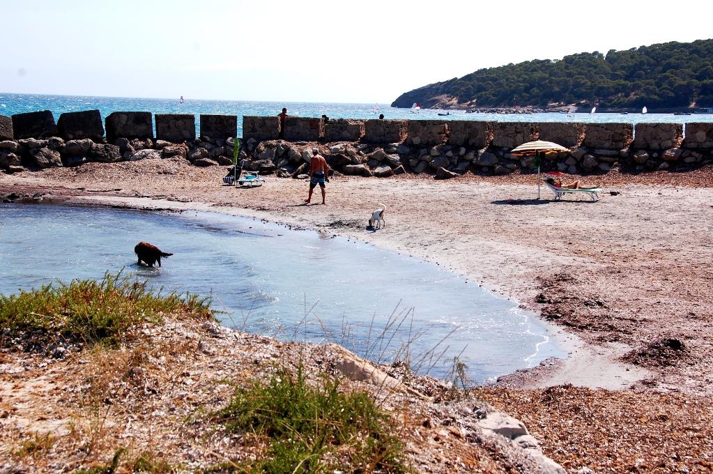 Det finns till och med en egen liten strand enbart för hundar och deras hussar och mattar