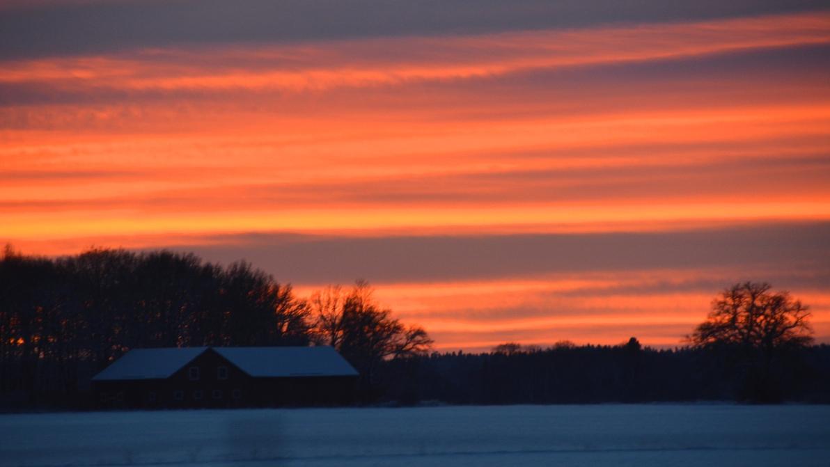 Röd himmel vinter
