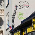 14 saker att se och göra i Reykjavik