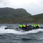Ribbåt i Nordnorge – på ribsafari i Saltströmmen