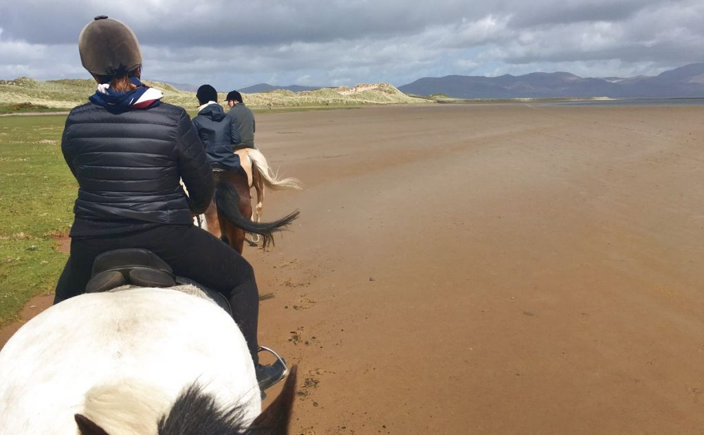 Rida häst på Irland