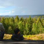 Ringsö i Mälaren – en svensk idyll
