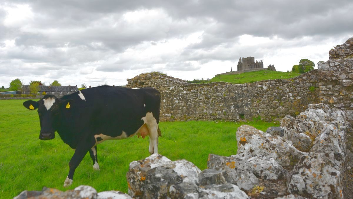 Rock of Cashel Irland