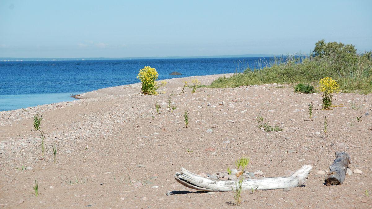 Rullsand strand och camping