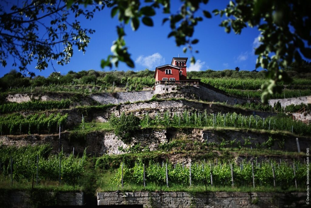 Hela världen i Tyskland: Saale-Unstrut