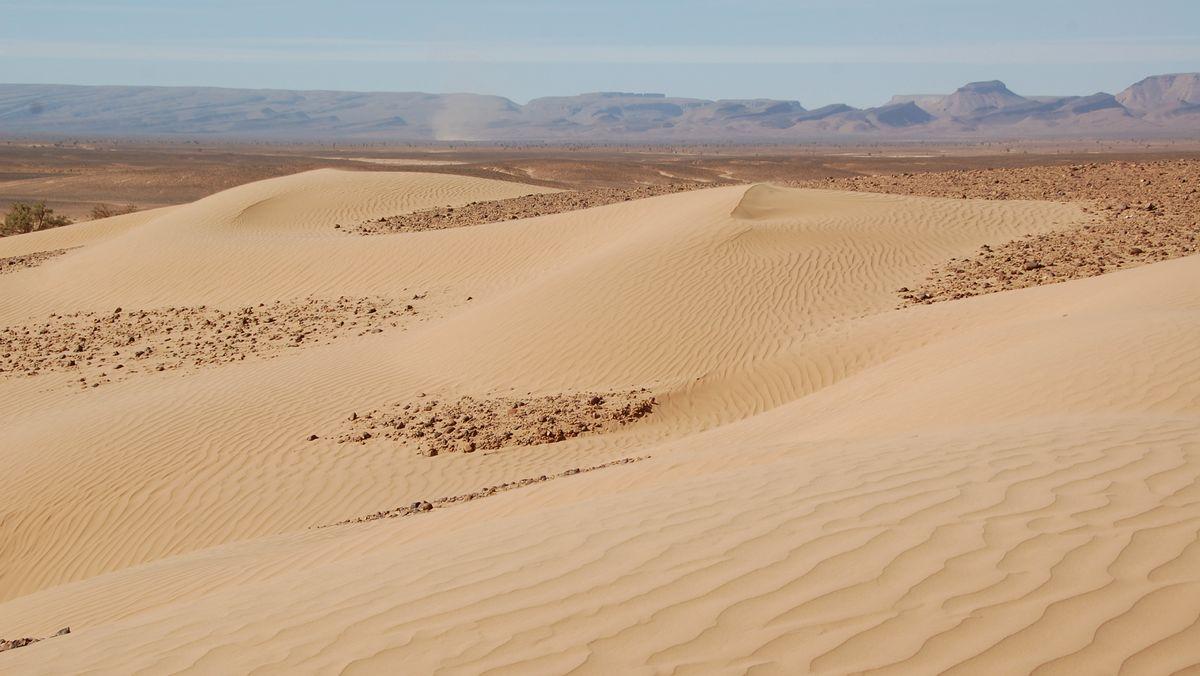 Sahara Marocko