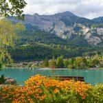 Höjdpunkter från resan – 12 fantastiska naturupplevelser