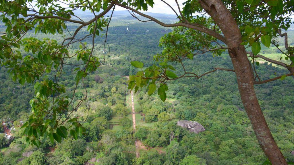 Utsikt från Sigiriya