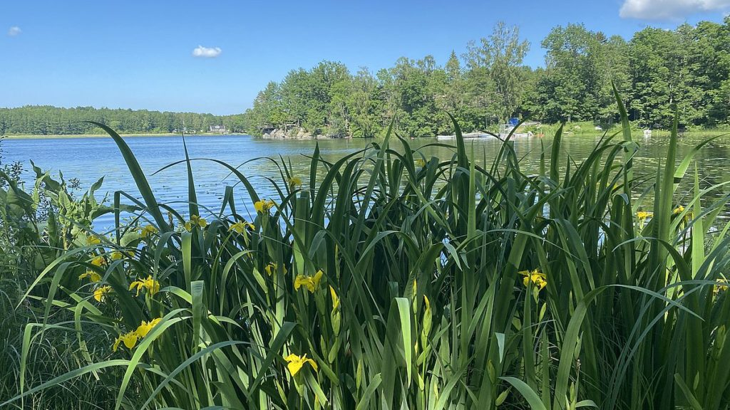 Sjön Erken och Norr Malma naturreservat