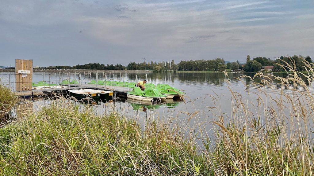 sjön Olesna
