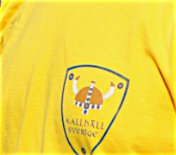 Kallhälls logga