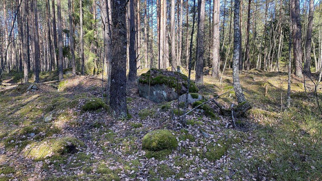 Norra Järvafältet