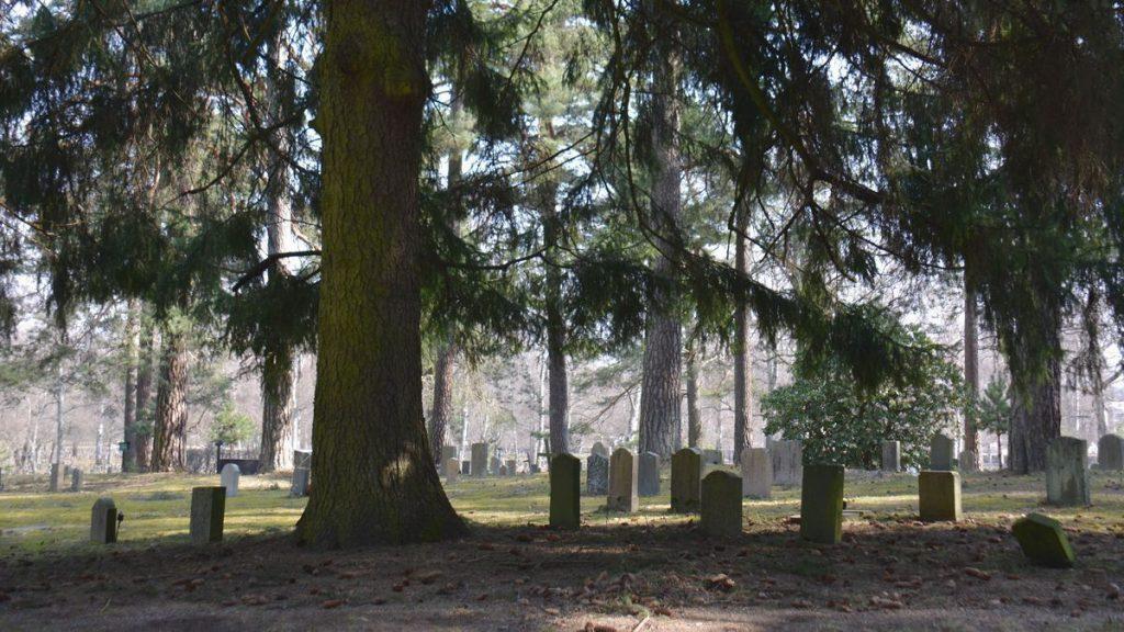 Höstweekend i Stockholm: Skogskyrkogården