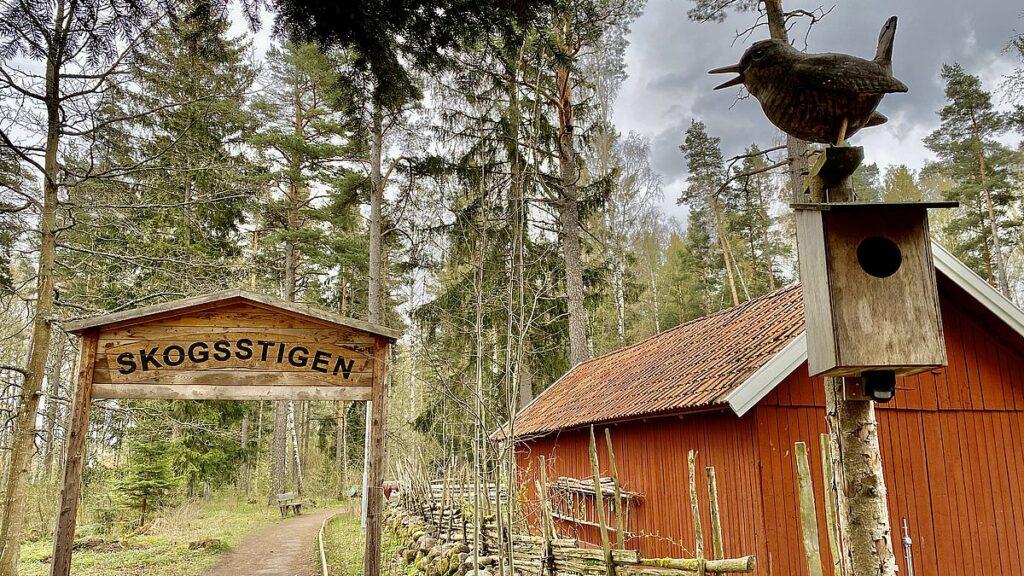 Gamla Linköping - Skogsstigen